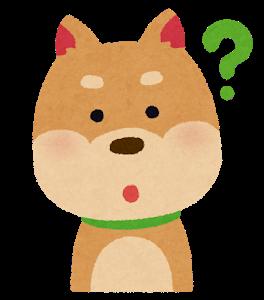 dog3_1_question