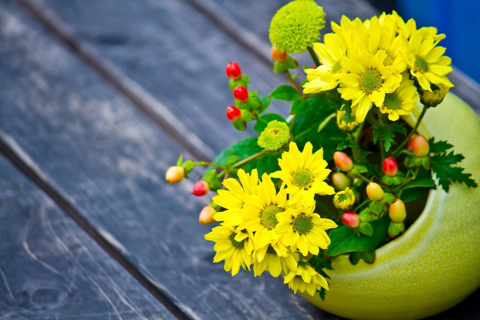 おうちで活けよう!🌼お花のある生活
